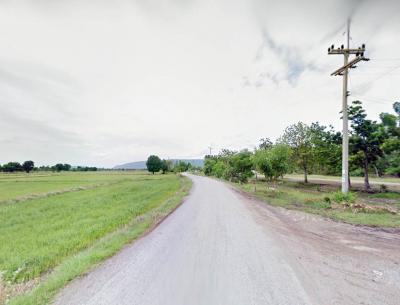 ที่ดิน 100000 ลพบุรี โคกสำโรง คลองเกตุ