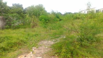 ที่ดิน 21000000 กรุงเทพมหานคร เขตบางเขน อนุสาวรีย์