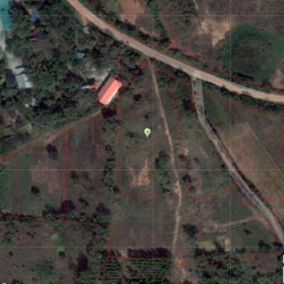 ที่ดิน 2600000 ชัยภูมิ จัตุรัส หนองบัวใหญ่