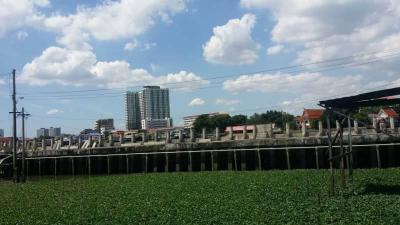 ที่ดิน 390000000 นนทบุรี เมืองนนทบุรี สวนใหญ่