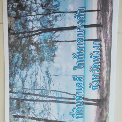 ที่ดิน 4200000 พังงา ตะกั่วป่า บางม่วง