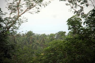 ที่ดิน 13000000 ตราด กิ่งอำเภอเกาะช้าง เกาะช้าง