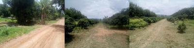 ไร่สวน 2200000 จันทบุรี สอยดาว ทับช้าง