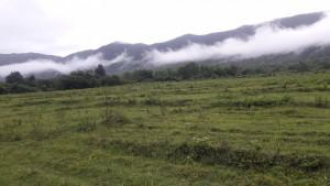 ที่ดิน 3000000 เชียงใหม่ กิ่งอำเภอแม่ออน ออนกลาง