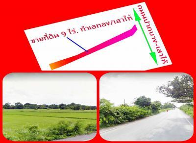 ที่ดิน 710000 สระบุรี เสาไห้ ศาลารีไทย