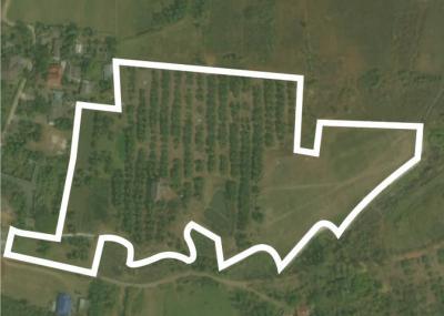 ที่ดิน 30000000 เชียงใหม่ กิ่งอำเภอแม่ออน ออนกลาง