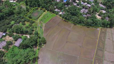 ที่ดิน 420000 เชียงใหม่ แม่แตง สบเปิง