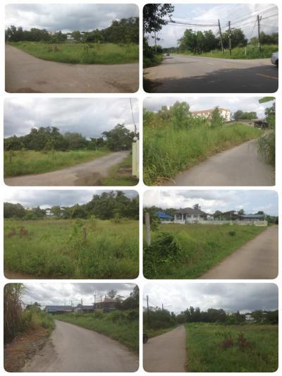 ที่ดิน 11000 จันทบุรี เมืองจันทบุรี ตลาด