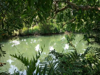 ที่ดิน 3210000 จันทบุรี เมืองจันทบุรี เกาะขวาง