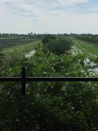 ที่ดิน 9500000 นครปฐม พุทธมณฑล คลองโยง