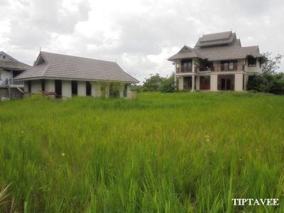บ้านเดี่ยว 16000000 เชียงใหม่ เมืองเชียงใหม่ ป่าแดด