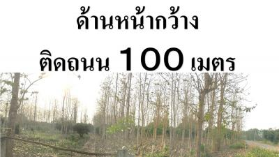 ที่ดิน 550000 เชียงราย กิ่งอำเภอเวียงเชียงรุ้ง ป่าซาง