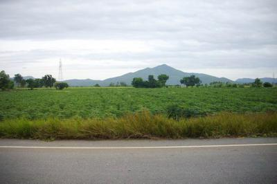 ที่ดิน 140000 ลพบุรี โคกสำโรง โคกสำโรง