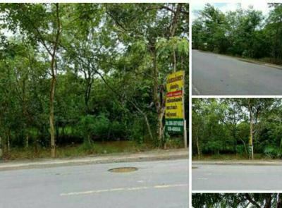 ที่ดิน 4760000 จันทบุรี เมืองจันทบุรี ท่าช้าง