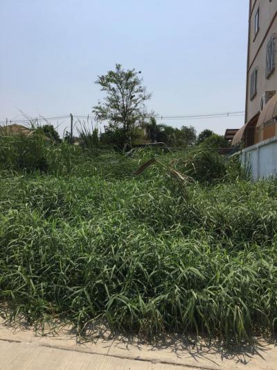 ที่ดิน 2300000 กรุงเทพมหานคร เขตลาดกระบัง คลองสองต้นนุ่น