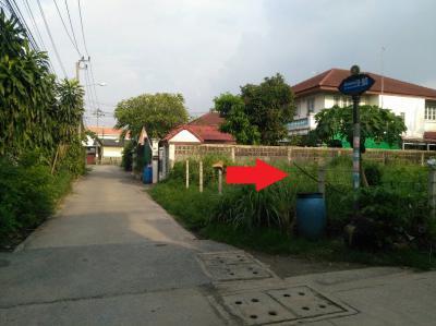 ที่ดิน 3000000 นนทบุรี เมืองนนทบุรี ตลาดขวัญ