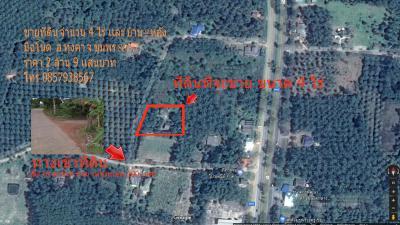บ้านพร้อมที่ดิน 2900000 ชุมพร เมืองชุมพร วิสัยเหนือ