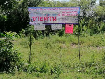 ที่ดิน 25482000 กาญจนบุรี บ่อพลอย หนองกุ่ม