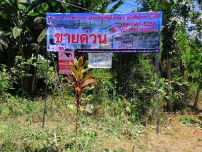 ที่ดิน 8000000 กาญจนบุรี ไทรโยค ท่าเสา