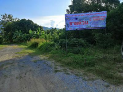 ที่ดิน 44000000 กาญจนบุรี ท่าม่วง ท่าล้อ