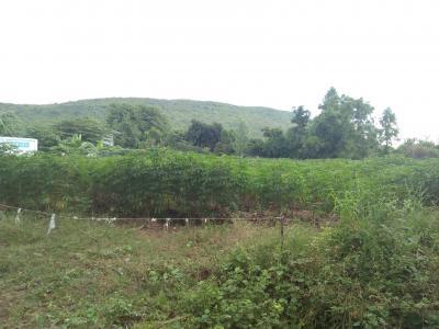 ที่ดิน 800000 ลพบุรี โคกสำโรง เพนียด