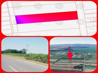 ที่ดิน 238000 ลพบุรี พัฒนานิคม มะนาวหวาน