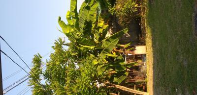 บ้านเดี่ยว 5190000 ลพบุรี เมืองลพบุรี นิคมสร้างตนเอง