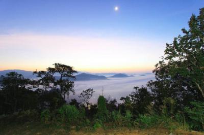 ที่ดิน 9500000 เชียงใหม่ สะเมิง สะเมิงใต้