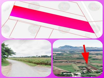 ที่ดิน 340000 สระบุรี เฉลิมพระเกียรติ พุแค