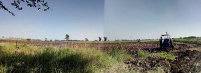 ที่ดิน 80000000 ลพบุรี หนองม่วง ชอนสารเดช