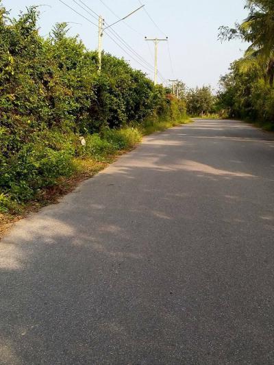 ที่ดิน 20000000 ประจวบคีรีขันธ์ กุยบุรี กุยบุรี
