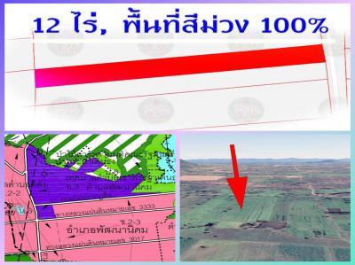 ที่ดิน 175000 ลพบุรี พัฒนานิคม พัฒนานิคม