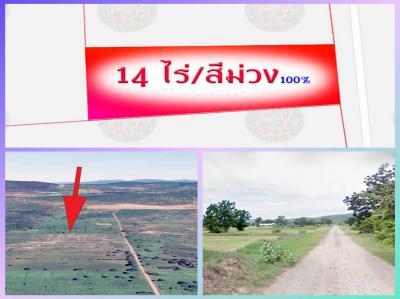 ที่ดิน 238000 ลพบุรี พัฒนานิคม พัฒนานิคม