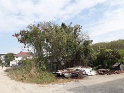 บ้านพร้อมที่ดิน 44000000 กรุงเทพมหานคร เขตบางกะปิ คลองจั่น