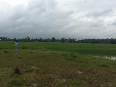ที่ดิน 4400000 นครพนม เมืองนครพนม นาราชควาย