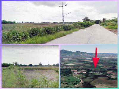 ที่ดิน 350000 สระบุรี บ้านหมอ หนองบัว