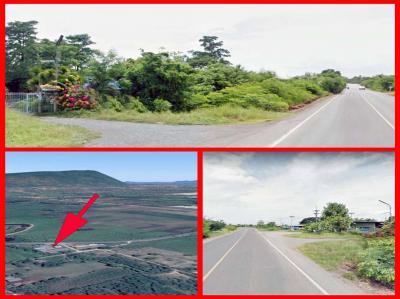 ที่ดิน 1250000 ลพบุรี พัฒนานิคม พัฒนานิคม