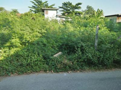 ที่ดิน 28000 กรุงเทพมหานคร เขตบางเขน อนุสาวรีย์