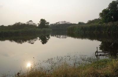 ที่ดิน 4000000 กรุงเทพมหานคร เขตคลองสามวา สามวาตะวันตก