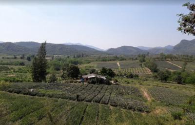 ที่ดิน 25000000 เพชรบุรี ท่ายาง กลัดหลวง