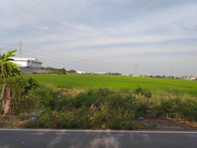 ที่ดิน 98800000 นนทบุรี บางบัวทอง ลำโพ
