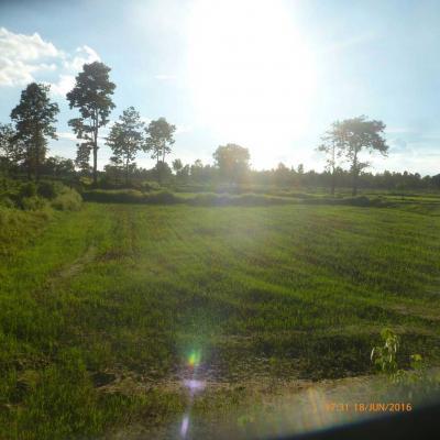 ที่ดิน 15000000 บุรีรัมย์ เมืองบุรีรัมย์ สวายจีก