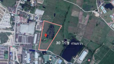 ที่ดิน 3500000 ชลบุรี บ้านบึง บ้านบึง