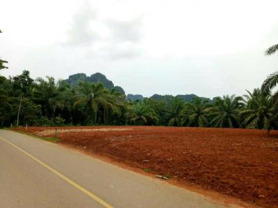 ที่ดิน 1390000 กระบี่ เมืองกระบี่ อ่าวนาง