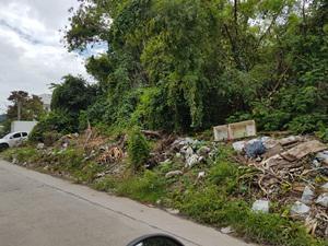 ที่ดิน 56550000 กรุงเทพมหานคร เขตจตุจักร
