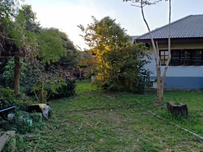 บ้านเดี่ยว 3350000 เชียงใหม่ แม่แตง ขี้เหล็ก