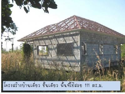 ที่ดิน 1690000 อุดรธานี บ้านผือ หายโศก