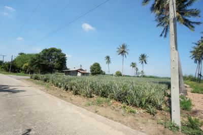 ที่ดิน 3500000 ประจวบคีรีขันธ์ ปราณบุรี เขาน้อย