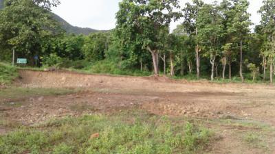 ที่ดิน 1700000 เชียงใหม่ กิ่งอำเภอแม่ออน ออนกลาง