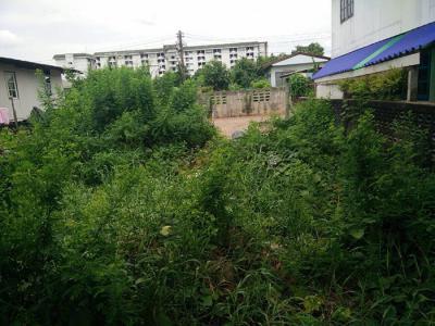 ที่ดิน 400000 ปทุมธานี ธัญบุรี ประชาธิปัตย์